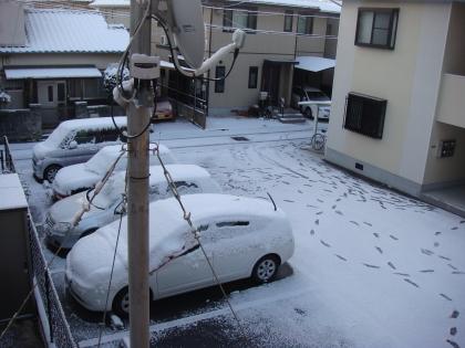 snow2_110117.jpg