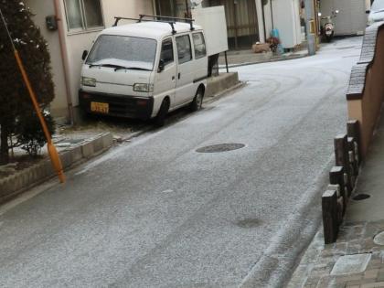 snow2_110131.jpg