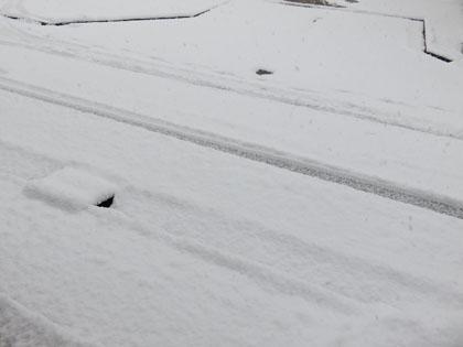 今シーズン初の大雪