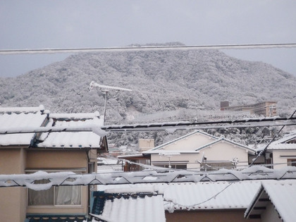この冬一番の雪